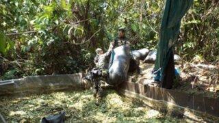 Destruyen pozas de maceración de hoja de coca en el Vraem