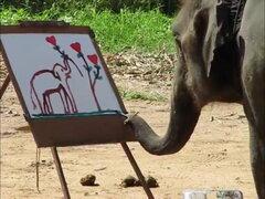 Las 10 especies animales más inteligentes del mundo