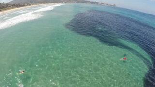 Aparente mancha de petróleo en el mar sorprendió a los bañistas al revelar su verdadera naturaleza
