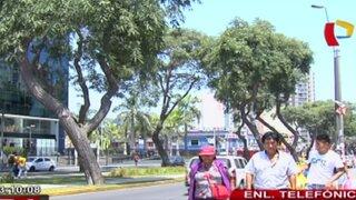 Lima soporta 31 grados de calor: temperatura se mantendrá durante 6 días