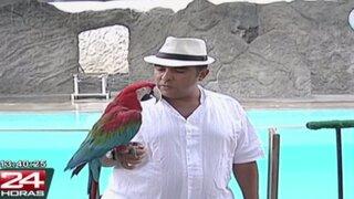 Zoológico de Huachipa: actores interactúan con animales en novedosa obra teatral