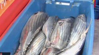 Precio del pescado se eleva por celebraciones de Semana Santa