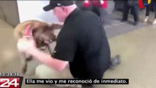 Policía adopta perra que entrenó durante años y que iba ser pasada al retiro