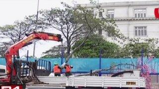 Municipalidad de Lima inició traslado de árboles por obras del By pass de 28 de Julio