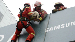 Surco realizó el primer simulacro de sismo con rescate de animales