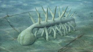 FOTOS : las 5 criaturas extintas más extrañas de la antigüedad