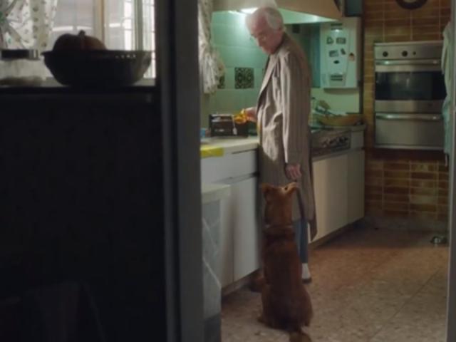 ¿Por qué todos terminamos llorando con este anuncio de un anciano y su perro?