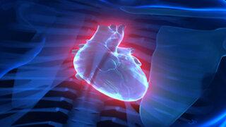VIDEO : nuevo software permite ver imágenes del corazón en 4D