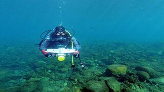 Australia : descubrimiento de pez 'alien' sorprende a los científicos