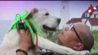 Dueño de perro moribundo se lo lleva de viaje de despedida