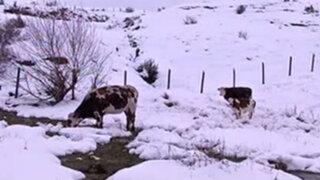 Chile: bajas temperaturas y fuertes vientos en centro y sur del país