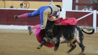 Torero sufre impactante corneada en la zona del pubis y queda grave