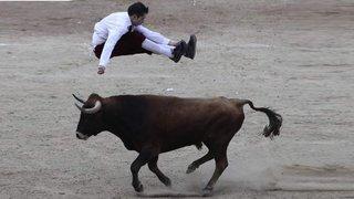 Jóvenes realizan acrobacias extremas desafiando embestidas de un toro