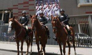 Desmienten que caballo vaya a ser sacrificado tras desalojo en El Agustino