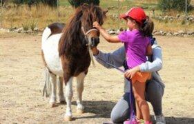 Niña es golpeada por pony durante entrevista en vivo