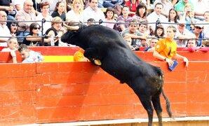 Toro derriba barrera de seguridad y embiste a aficionados en España