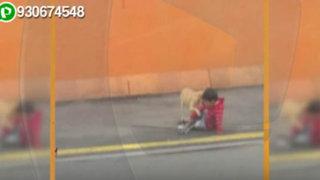 Impactantes imágenes: niño juega al borde de la transitada vía de Evitamiento