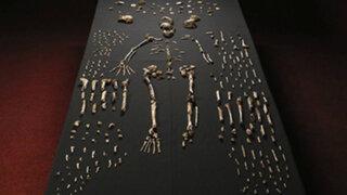 'Homo naledi', el nuevo antepasado humano descubierto en Sudáfrica