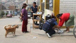 Confirman primer caso de rabia humana en mujer gestante de Arequipa