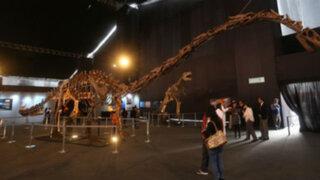 Dinosaurios gigantes animatronics invaden el Jockey Club del Perú