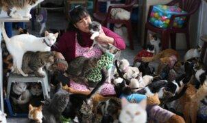 """""""La dama de los gatos"""": así es el albergue de felinos enfermos de Lima"""
