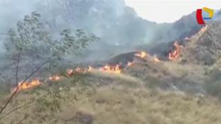 Machu Picchu: controlan incendio forestal registrado cerca a ciudadela inca