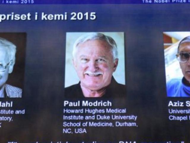 Nobel de Química para tres investigadores por estudios sobre el ADN