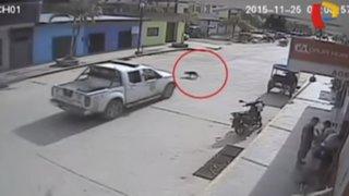 VIDEO: patrullero de la PNP atropella y mata a un perro en Tocache