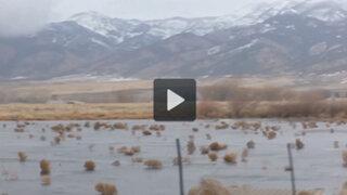 VIDEO: esto es lo que produce una fuerte tormenta en Montana