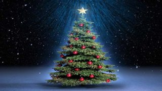 ¿Cuál es el verdadero origen del tradicional árbol de Navidad?