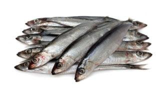 Olvídate de los excesos de Año Nuevo consumiendo pescados azules