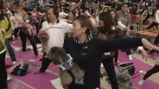 Hong Kong logra nuevo Récord Guinness con clase de yoga para perros