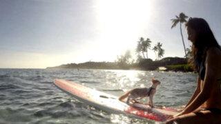 Conoce a Kuli, el único gato surfista del mundo