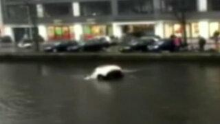 Países Bajos: dramático rescate de una madre y su bebé que cayeron a canal