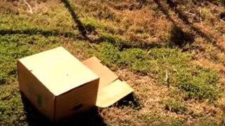 Encontró una misteriosa caja en medio de la nada y lo que descubrió fue conmovedor
