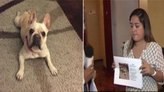 Surco: delincuentes asaltaron casa y se llevaron a la mascota