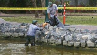 San Isidro: peces de laguna de El Olivar murieron envenenados por sulfato de cobre