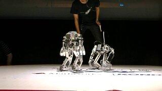 Así se realizó el torneo mundial de lucha libre de robots en Japón