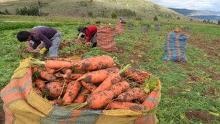 Agricultura: estas son las propuestas de los candidatos para fortalecer dicha actividad económica