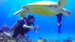 Buceo en Pucusana: una aventura inolvidable bajo el mar