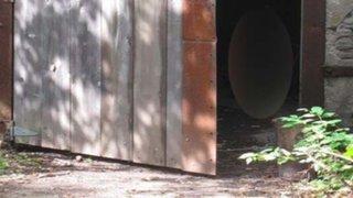 Notó una puerta abierta en un edificio abandonado y lo que descubrió fue impresionante