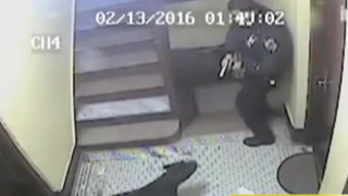 EEUU: policía mata de un disparo a perro pitbull