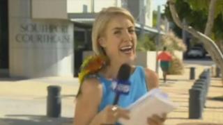 Australia: loro asusta a reportera durante transmisión en vivo