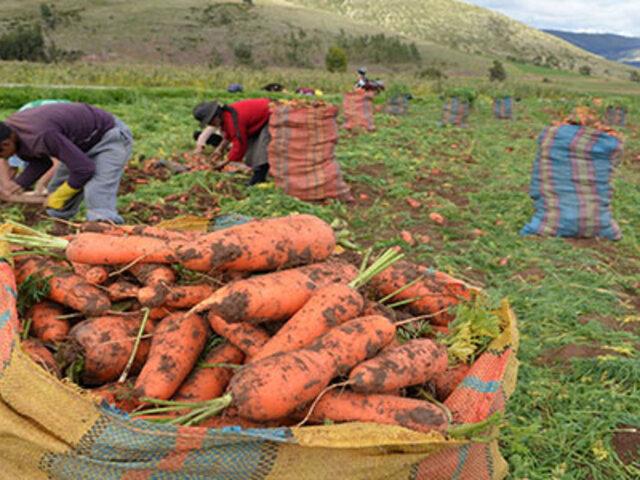 Estado comprará  a pequeños agricultores como mínimo 30% de alimentos que producen