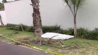 La Molina: hombre muere tras caer de palmera