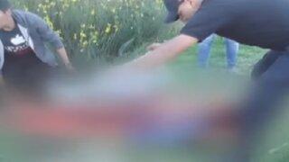 Huancayo: rottweilers atacan a niño de 12 años