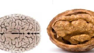 Conoce las frutas y verduras que se parecen a los órganos que benefician