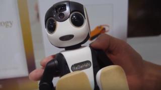 Lanzan primer celular robótico del mundo en Japón