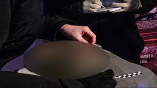 Lo que se encontró en una grieta de hielo en Siberia ha dejado en shock a los científicos