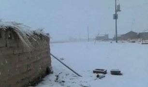 Bajas temperaturas continúan azotando zonas altoandinas del Perú